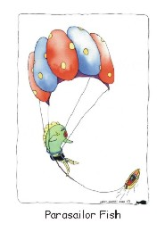 Parasailor Fish card front